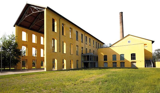 """Un successo l'iniziativa """"Giocare tra gli alberi nei parchi di Parma"""""""