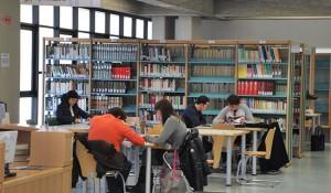 biblioteca_sotto_albero
