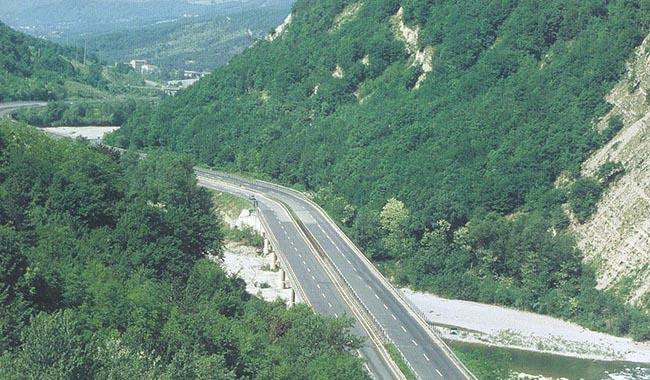 Caprioli sulla carreggiata, pericolo anche in Autostrada
