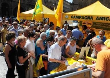 Agrimercato, prorogata la convenzione al 2016