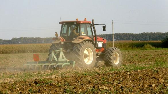 Regione: fondo in credito agevolato per le aziende agricole