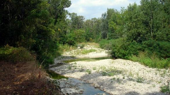 Dalla Regione fondi per le aree protette