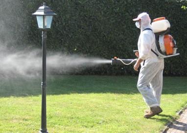 """Gli interventi contro le zanzare … non solo le """"tigri"""""""