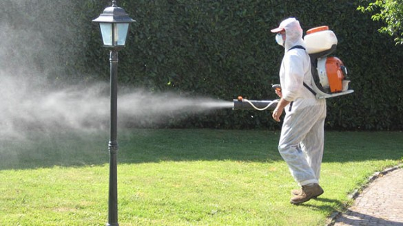 Virus Dengue a Mariano: tre notti di disinfestazione