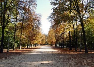Via ai lavori di riqualificazione per il Parco Ducale