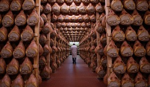 A worker checks in a special room where the Parma hams are hung to dry in Langhirano near Parma, October 13, 2009. Prosciutto di Parma can only be produced in a very restricted area of 29 sq km (11.2 sq mile) around the town of Parma in the region of Emilia Romagna, just north of Tuscany. Around 10 million hams are sold every year, of which about 2 million are exported, mainly to France, the United States and Germany, which each consume about 400,000 a year. To match Reuters Life! FOOD-ITALY/HAM      REUTERS/Stefano Rellandini (ITALY FOOD SOCIETY IMAGES OF THE DAY)