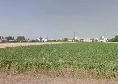 Il Comune vende il terreno di via XXIV Maggio all'AUSL