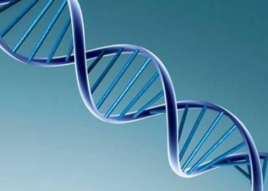 Un nuovo strumento per individuare il tumore alla prostata