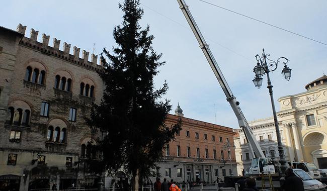 Da Asiago atterra l'albero di Natale in Piazza Garibaldi