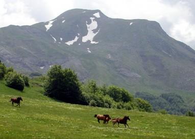 L'Appennino Tosco-Emiliano è Parco Unesco