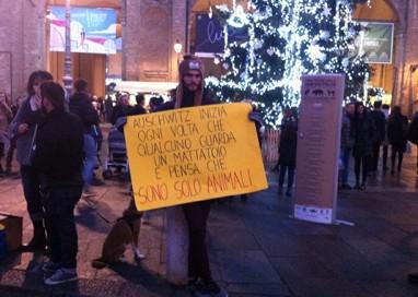 Piazza Garibaldi, tra feste Unesco e proteste animaliste