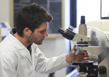 Ricercatori di Unipr: cura a partire da un batterio
