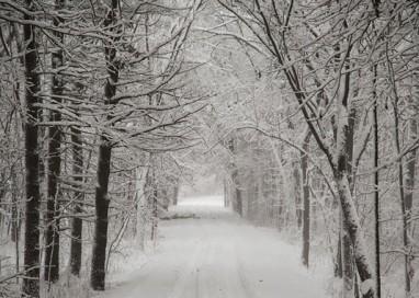 Maltempo: in arrivo nuova perturbazione con neve e pioggia