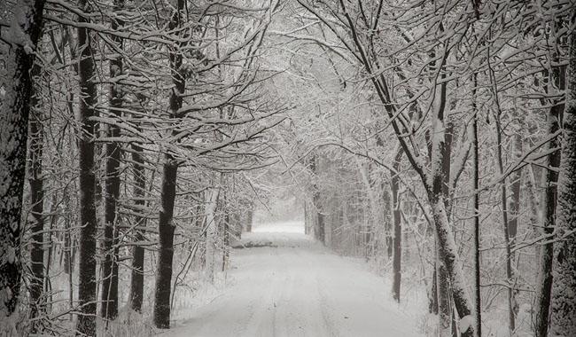 Meteo: allerta neve fino alle ore 24 di lunedì
