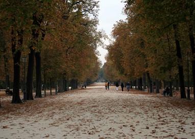 Parco Ducale – viale Piacenza: addio al muro