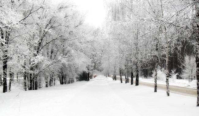 Allerta Gialla per neve nella giornata di mercoledì 30