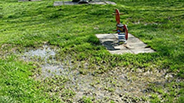 Parco Ferrari: cittadini offrono una colletta per sistemare il terreno