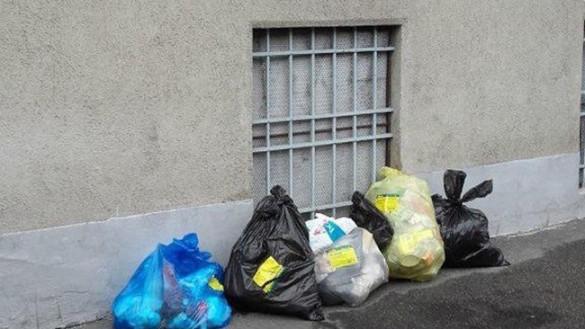 Consiglio Comunale: emergenza ratti in via Palermo