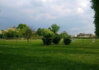 "M5S: ""Campo da calcio nel parco via Jacobs, scelta condivisa"""