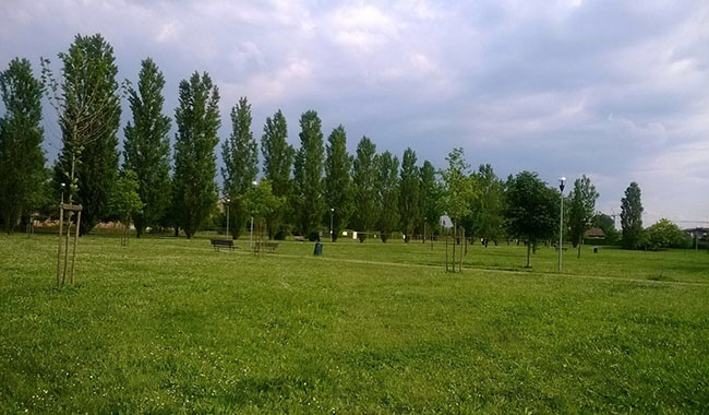 Campo da calcio nel parco, il Comune per ora va avanti