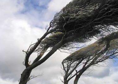 Forte vento in arrivo: allerta gialla per giovedì 14
