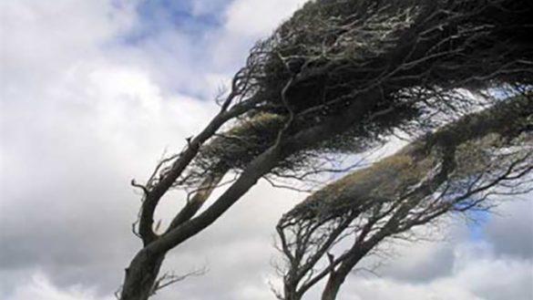 Il vento fa paura in città: domenica chiusi Ducale, Cittadella e via Villetta