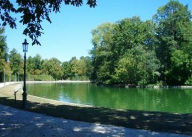 Dall'autunno 800 alberi al Parco Ducale