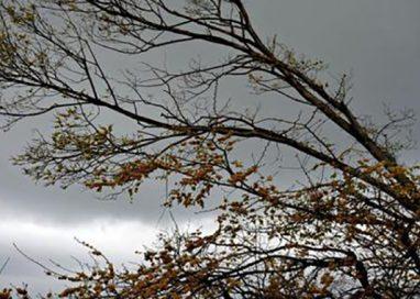 Temporali e vento forte, prevista allerta gialla per martedì