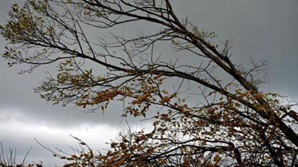 Rischio idrogeologico, vento e temporali. Ancora allerta gialla