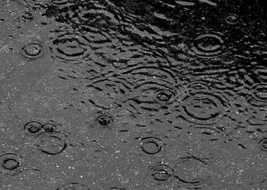 Torna la pioggia (poca) a Parma dopo un gennaio senza precipitazioni