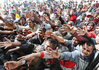 Giornata Mondiale del Rifugiato. Parma ne ha accolti 1.049