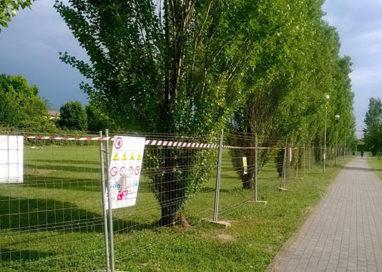 """Tar boccia il Comune """"No al campo da calcio in un parco pubblico"""""""
