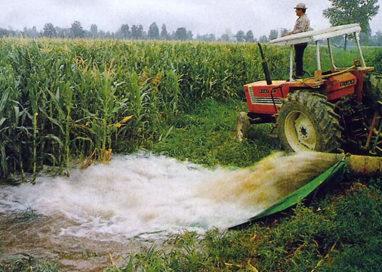 Siccità, conseguenze negative sulle colture tipiche