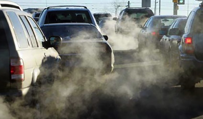 "WWF: ""La messa al bando dei veicoli Euro4 non basta"""