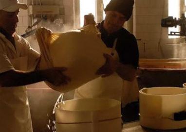 All'Araldi rubato formaggio e furgone. L'appello sui social
