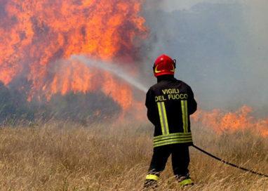Noceto. Grosso incendio e fumo denso