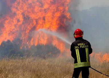 Incendi boschivi.Dal 23, in Emilia Romagna scatta lo stato di pericolosità