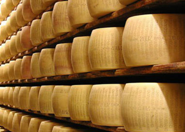 Latte non conforme, sequestrate 196 forme di Parmigiano
