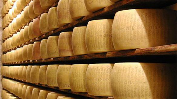 Traversetolo: rubate 40 forme di Parmigiano Reggiano