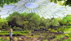 utopia-agricoltura-urbana-india-produce-piu-energia-che-usa-11994-9632742