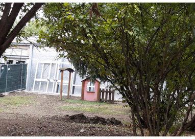 Materna Zanguidi, piove nelle classi dopo la ristrutturazione