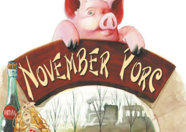 November Porc: i numeri dell'edizione 2016