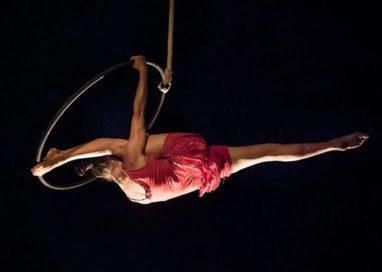 Green Night la magia del Cirque Bidon al Barilla Center