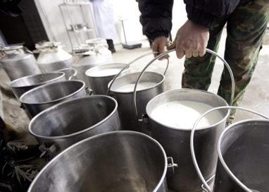 Approvata l'etichettatura obbligatoria per l'origine di latte e derivati