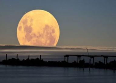 Notte da lupi mannari: la Luna piena più grande degli ultimi 68 anni