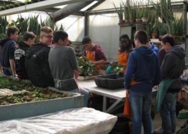 Scuole: nasce superpolo agroalimentare con quattro istituti