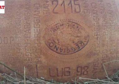 Un Parmigiano Reggiano di 18 anni esportato in Canada