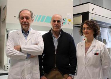 Da Parma, nuova speranza per curare l'epatite B