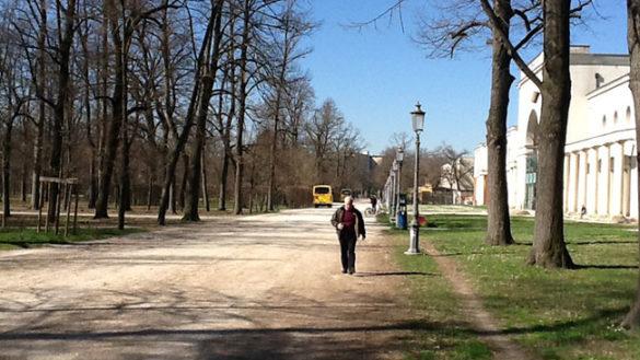 Parco: adesso i bus sono due