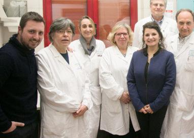Midollo osseo, a Parma sette donazioni andate a buon fine